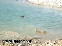 aaron en el agua
